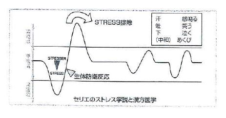 セリエのストレス学説と漢方医学